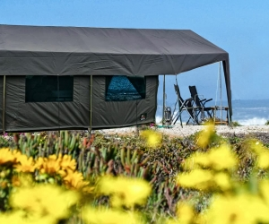 Namaqua Flower Beach Camp 1.jpg