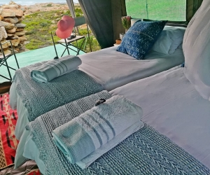 Namaqua-Flower-Beach-Camp-6.jpg