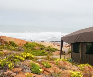 Namaqua-Flower-Beach-Camp-7.jpg